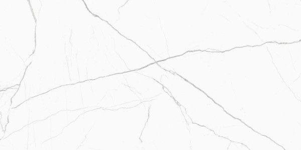 - 600 x 1200 mm (24 x 48 pouces) - Glint Statuario Spider